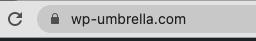 Padlock SSL icon