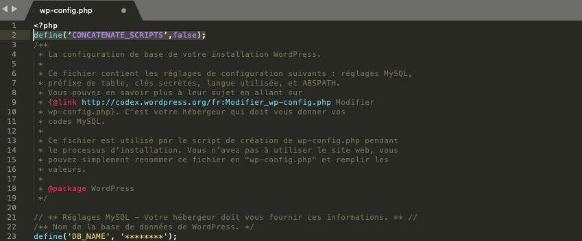 concatenate_scripts false wordpress